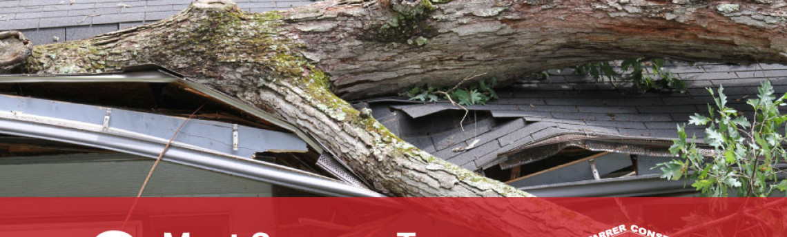 The 3 Most Common Types of Storm Damage